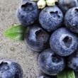 Τρόφιμα με αντικαρκινική δράση